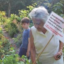 2017 Neighborly Harvest program